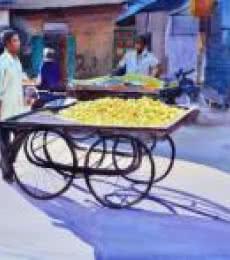 Lemon Seller   Painting by artist Ramesh Jhawar   watercolor   Paper