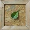 leaf,green,leaf,dry leaf,nature