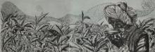 Sukhmoy Bagh | Energy Of Life Printmaking by artist Sukhmoy Bagh | Printmaking Art | ArtZolo.com