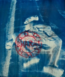 art, printmaking, archival paper, cyanotype , contemporary