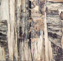 Abstract Mixed-media Art Painting title Wood Texture IV by artist Somen Debnath