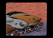Arvind Sharma | Sea Animal Printmaking by artist Arvind Sharma | Printmaking Art | ArtZolo.com