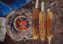 Still-life Watercolor Art Painting title Corn Cob by artist Raksha Ranganath