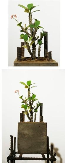 Mixedmedia Sculpture titled 'The Cube' by artist Abhishek Salve