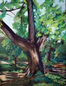 Pastel Tree | Pastel by artist Niharika Garg | on Chowky board Framed