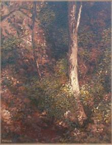 Landscape Oil Art Painting title 'Tree Trunk I' by artist Fareed Ahmed