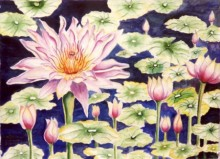Water Lily | Painting by artist Subodh Maheshwari | watercolor | Paper