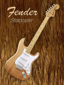 Shavit Mason | American Fender Stratocaster Photography Prints by artist Shavit Mason | Photo Prints On Canvas, Paper | ArtZolo.com