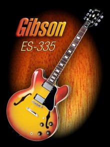 Shavit Mason | Wonderful Gibson ES - 335 Photography Prints by artist Shavit Mason | Photo Prints On Canvas, Paper | ArtZolo.com