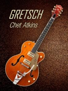 Shavit Mason | Gretsch Chet Atkins Photography Prints by artist Shavit Mason | Photo Prints On Canvas, Paper | ArtZolo.com