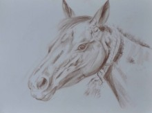 Bhavesh Patel | Dry-pastel Painting title Horse on Paper | Artist Bhavesh Patel Gallery | ArtZolo.com