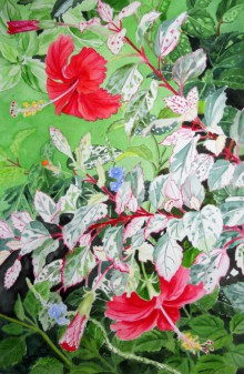 Photorealistic Watercolor Art Painting title 'Red Hibiscus Variegated' by artist Vishwajyoti Mohrhoff