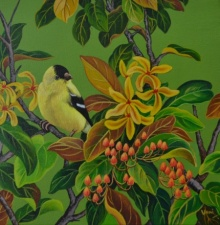 Nature Acrylic Art Painting title Oriole 3 by artist Vani Chawla