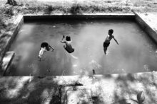 Fly To Swimming | Photography by artist Rahmat Nugroho | Art print on Canvas