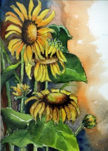 Nature Watercolor Art Painting title 'Sun Flower I' by artist Krupa Shah