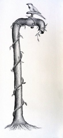 Thirst 52 | Drawing by artist Nuril Bhosale |  | pen | Paper