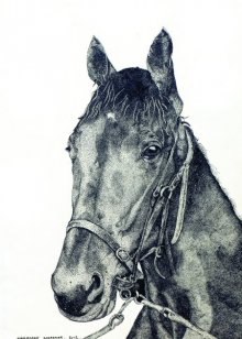 Animals Ink Art Drawing title 'Horse 1' by artist Kamalesh Salaskar