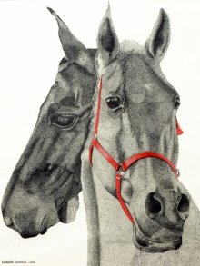 Animals Ink Art Drawing title 'Two horses' by artist Kamalesh Salaskar