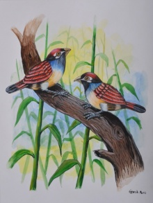 Birds Painting 25 | Painting by artist Santosh Patil | watercolor | -