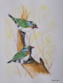 Animals Watercolor Art Painting title 'Birds Painting 26' by artist Santosh Patil