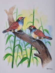 Animals Watercolor Art Painting title 'Birds Painting 25' by artist santosh patil
