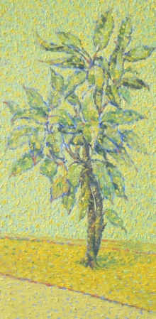 Nature Oil Art Painting title Afternoon 2 by artist Gopal Gangawane