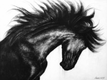 Anand Sai | Charcoal Painting title Wild Spirit 1 on Canvas | Artist Anand Sai Gallery | ArtZolo.com