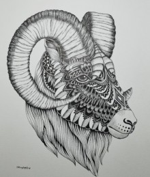 Goat 4 | Drawing by artist Kushal Kumar | | pen | Paper