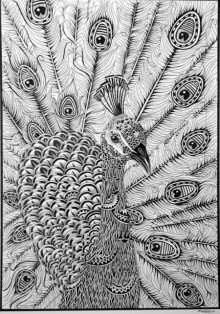 Animals Pen Art Drawing title 'Peacock' by artist Kushal Kumar